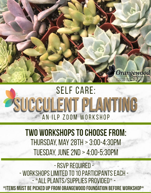 succulent workshop flyer